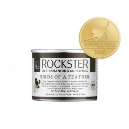 Rockster - Birds of a...