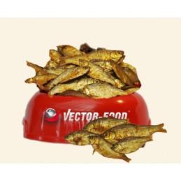 Vector-Food - Suszona rybka...