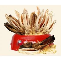 Vector-Food - Uszy królicze...