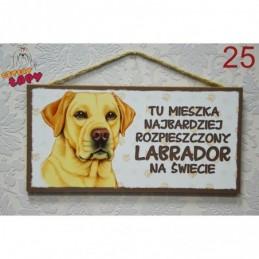 """Tabliczka z rasą psa """"Labrador"""""""