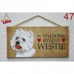 """Tabliczka z rasą psa """"Westie"""""""