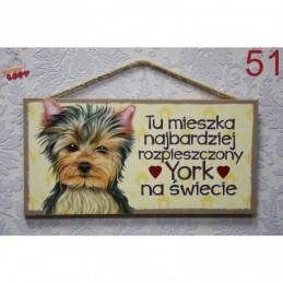 """Tabliczka z rasą psa """"York"""""""