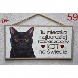 """Tabliczka z rasą kota """"Kot"""""""