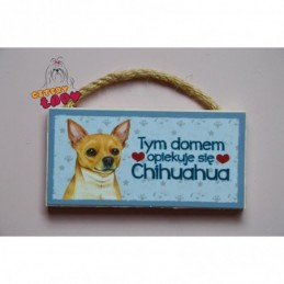 Magnes z rasą psa - Chihuahua