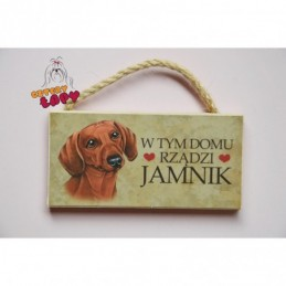 Magnes z rasą psa - Jamnik