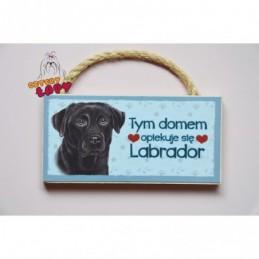 Magnes z rasą psa - Labrador