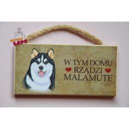 Magnes z rasą psa - Malamute