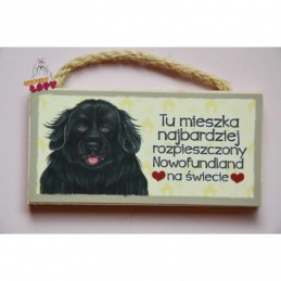 Magnes z rasą psa - Nowofundland